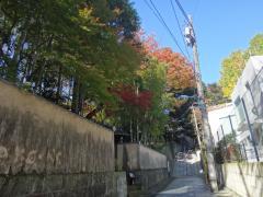 穏やかな秋の日